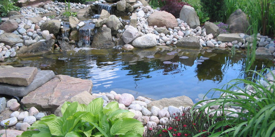 Outdoor garden and koi fish ponds aqua animania pets for Local fishing ponds